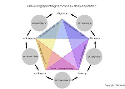 Udviklingspentagrammet & de 5 aspekter